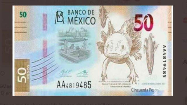 20 de febrero de 2020, nueva imagen con ajolote tendrá el billete de 50 pesos (Imagen: Twitter @peigarza)