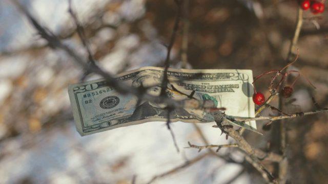 Billete dólar estadounidense (Imagen: Unsplash)