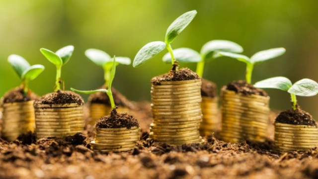 Bonos Verde, Economía Verde, Economía, Bonos, Economía Mexicana