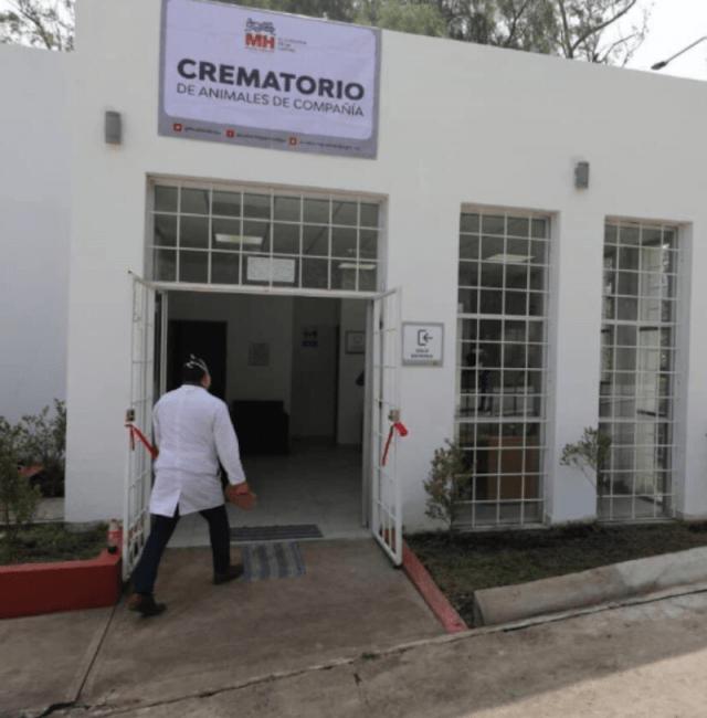 CDMX crematorio mascotas (Imagen: Alcaldía Miguel Hidalgo)