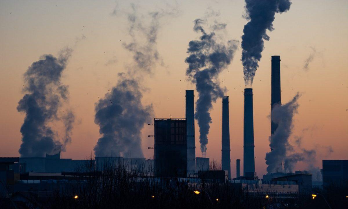 Greenpeace logra suspensión definitiva de Prosener 2020-2024
