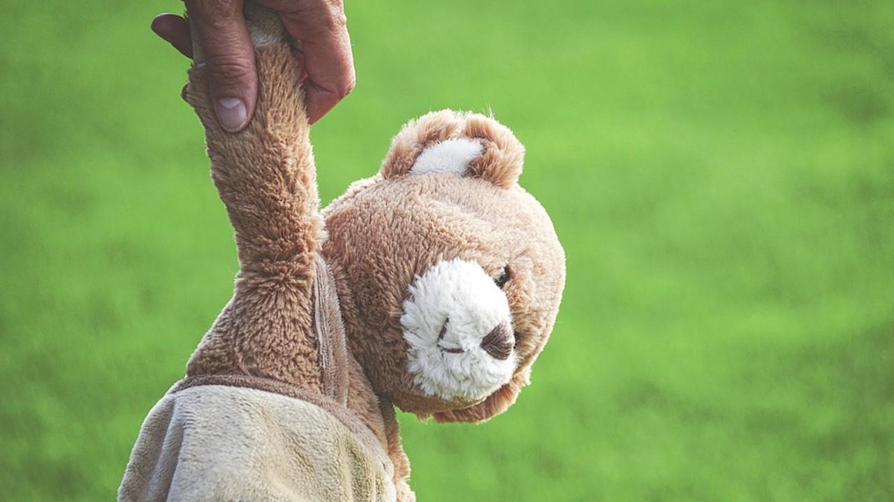 Oso de peluche Teddy, su origen y por qué es un negocio millonario (Imagen: pixabay)