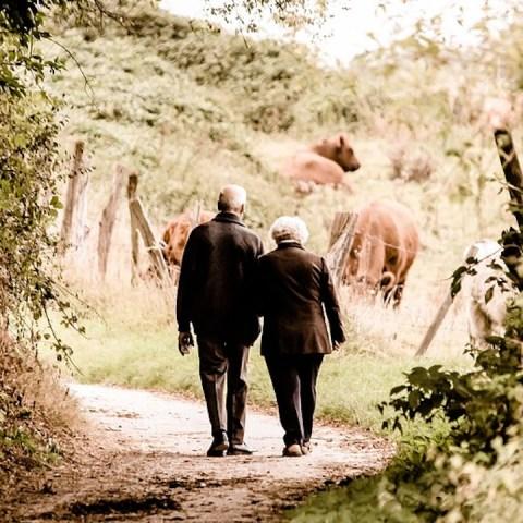 Tipos de pensiones del ISSSTE y sus requisitos para solicitarlas (Imagen:pixabay)