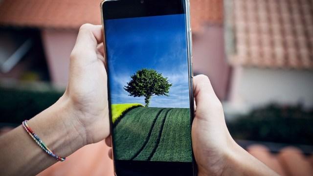 Características a revisar antes de comprar un celular durante el Buen Fin 2020