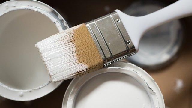 ¿Vas a pintar tu casa? Con estos consejos podrás ahorrar