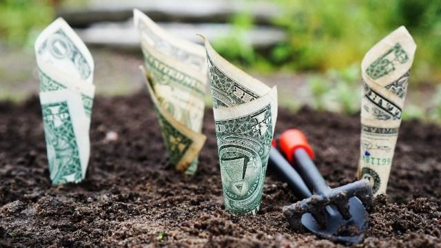 Es buena idea invertir parte de tu aguinaldo en dólares