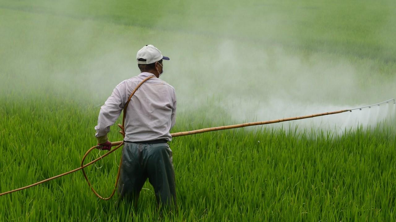 Uso de pesticida en el campo (Imagen: pixabay)