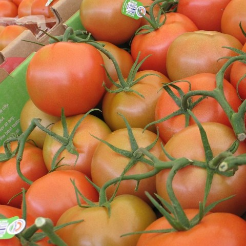 El jitomate es el alimento de temporada que encontrarás más barato