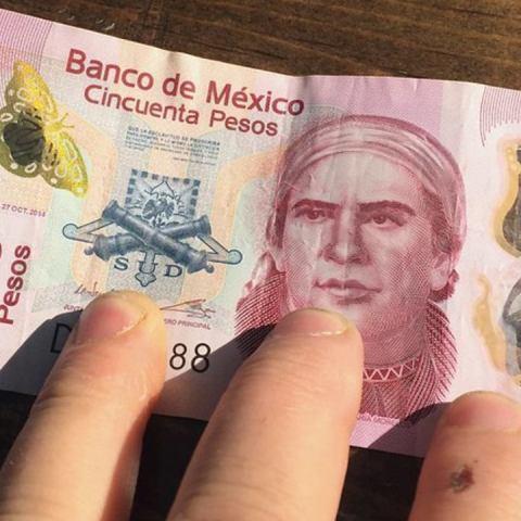 Billete de 50 pesos se vende en casi 25 mil pesos