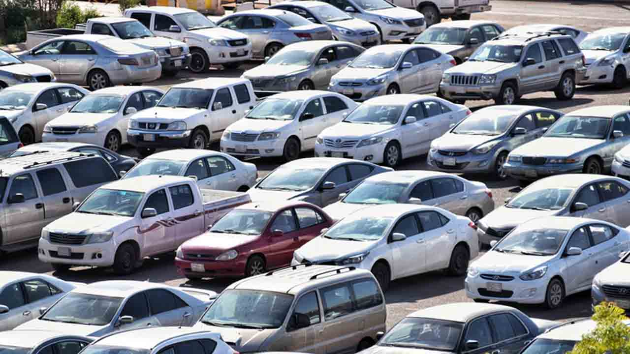 Verifica la legalidad del auto
