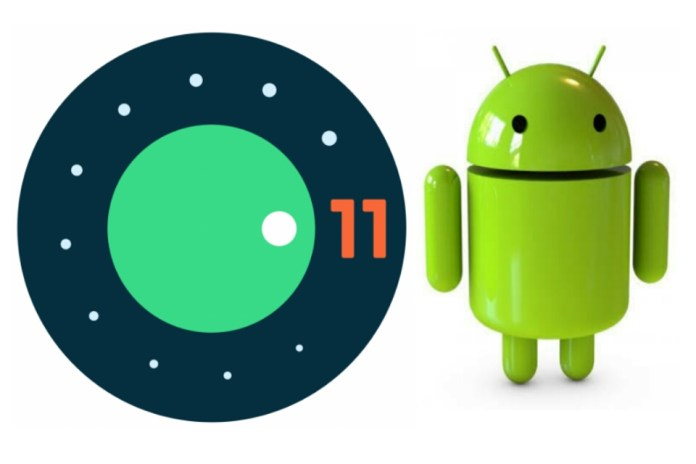 Android 11 OS First Developer Preview