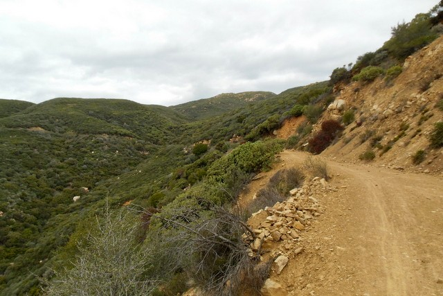 matilija canyon trail