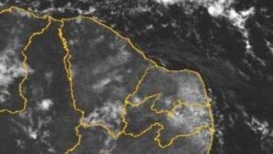 Photo of Milagres registra chuva 4.3 mm, mas com esperança de um bom inverno; entenda