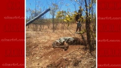 Photo of Brejo Santo-CE: Homem é encontrado morto às vésperas do aniversario