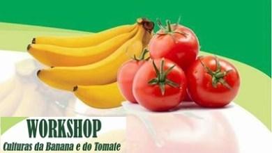 Photo of Secretaria de Agricultura de Porteiras-Ce, promove workshop sobre o cultivo de banana e tomate