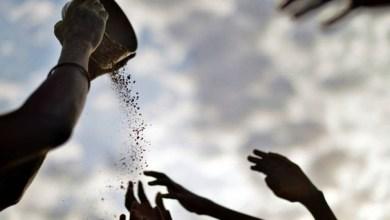 Photo of Brasil pode voltar a fazer parte do Mapa de Fome da ONU; saiba mais