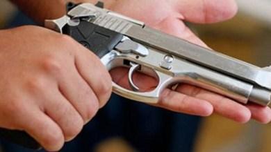 Photo of Comissão autoriza posse de arma por moradores da zona rural; confira