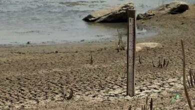 Photo of Milagres está entre os municípios cearenses mais afetados com a seca