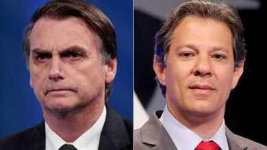 Foto de Eleições 2018: Na cidade de São Paulo, Haddad aparece com 51% dos votos, e Bolsonaro, 49% segundo pesquisa IBOPE; confira