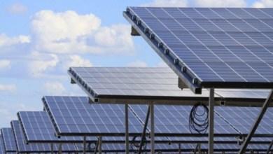 """Foto de """"Terra do sol"""": Complexo solar de 243 MW será construído entre Missão Velha e Porteiras"""