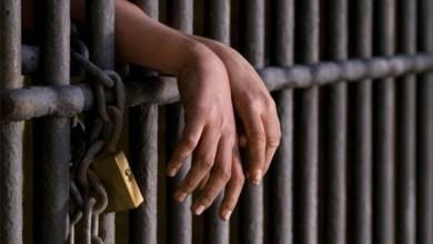 Photo of Polícia Civil prende 11 por crimes sexuais contra crianças e adolescentes no estado do Ceará