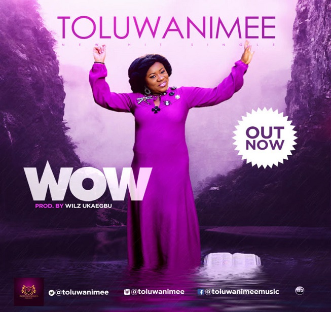 Toluwanimee Releases New Single Titled WOW! @Toluwanimee