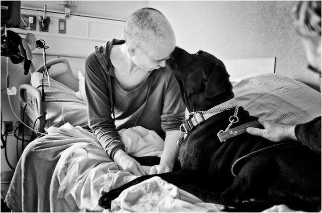 fotografo retrata a su esposa con cancer hasta que muere (13)