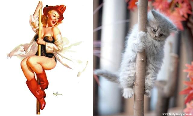 gato como chica pin-up bombero