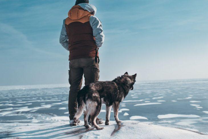 Perrito huskie parado junto a su dueño en un lago congelado