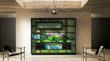 Freshwater Live Plant Aquarium