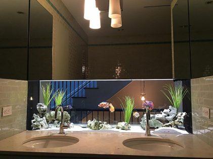 Upper West Side Bathroom Back Splash Freshwater Aquarium