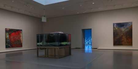 custom reef aquarium installation Paris France