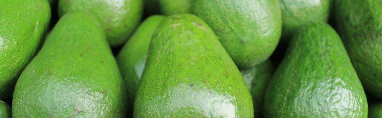 Die Avocado ist ein beliebtes Super-Food in der Ketose