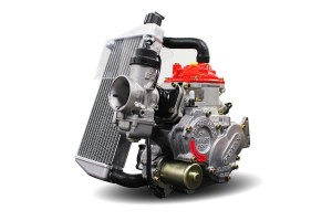 Moteur ROTAX MAX NATIONALE