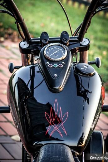 Kawasaki VN 800 bobber 12