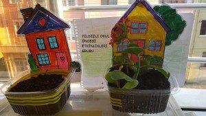 çimlendirme deneyi-sanat etkinliği kalıplı (3)