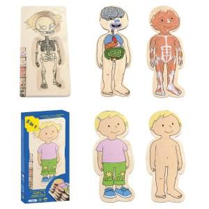 İnsan Anatomisi Puzzle - Kız