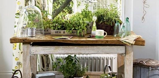 Delo na vrtu - Vrtna opravila