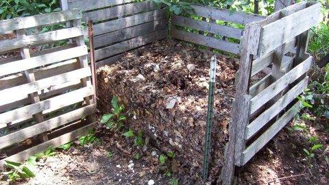 izboljšati tla - kompost