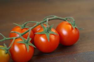 paradižnik - antioksidanti