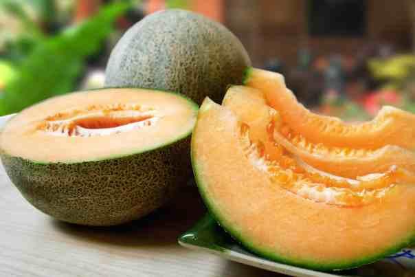 Melone – osvežujoč poletni pridelek