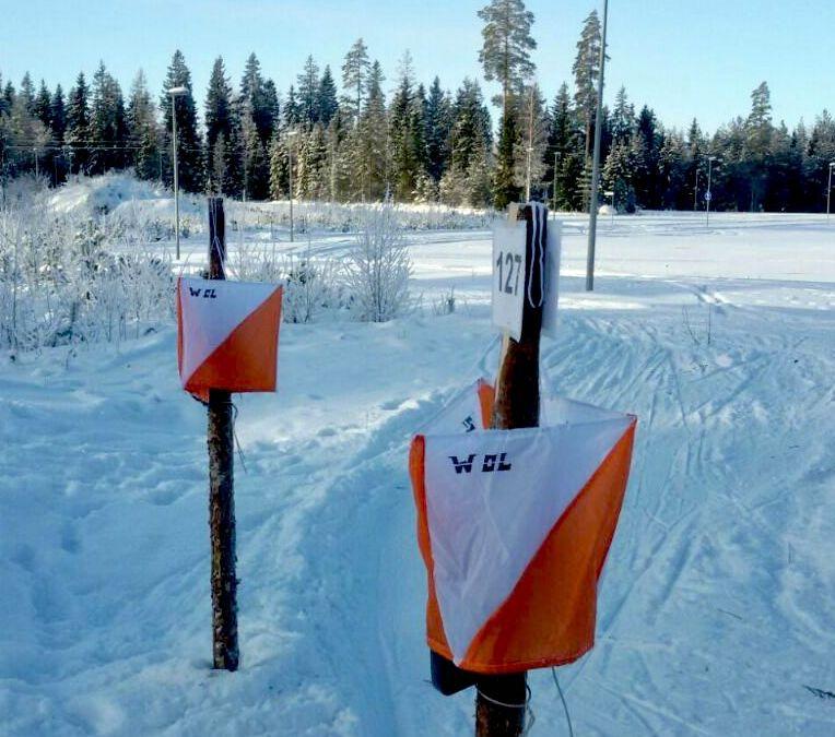Rückblick auf die Ski-OL-Saison