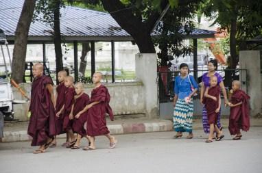 Moinillons à Mandalay
