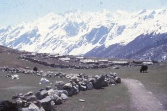 massif de Langtang