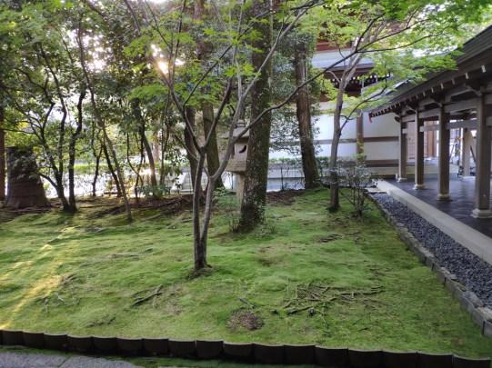 kyoto Ryaon Ji temple: mousse
