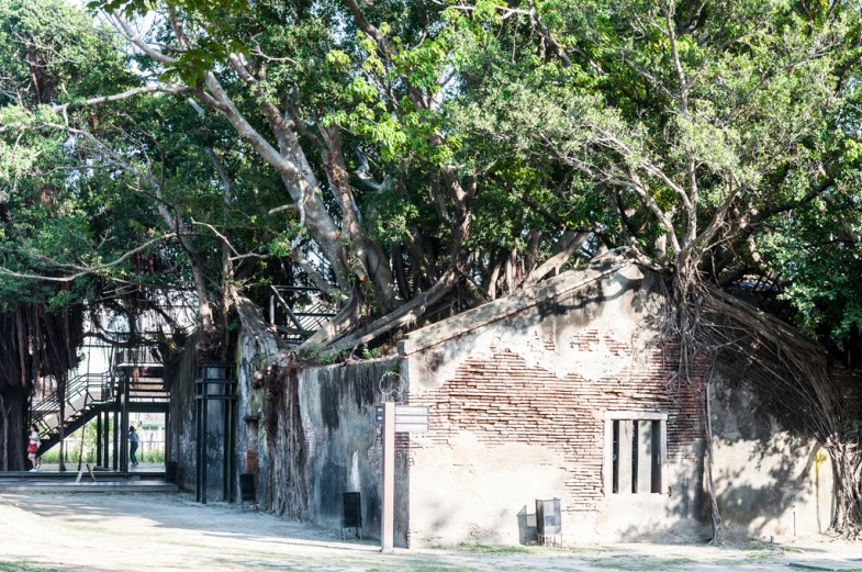 tainan anping tree house (anciennes douanes)