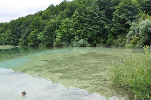 Youg 952 lacs de Plitvice