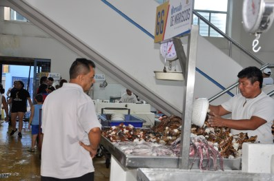 marché casco viejo