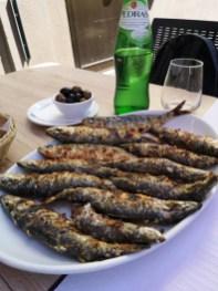 Porto sardines à Matosinhos
