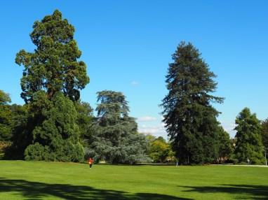 Rennes: parc Thabor